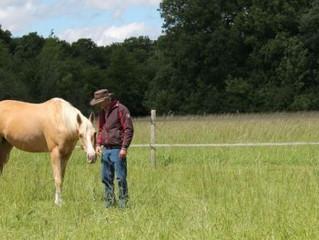 """Il murmure à l'oreille des chevaux pour aider les hommes : article paru dans """"le parisien&q"""