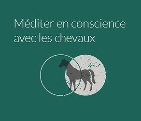 Méditer en conscience avec les chevaux
