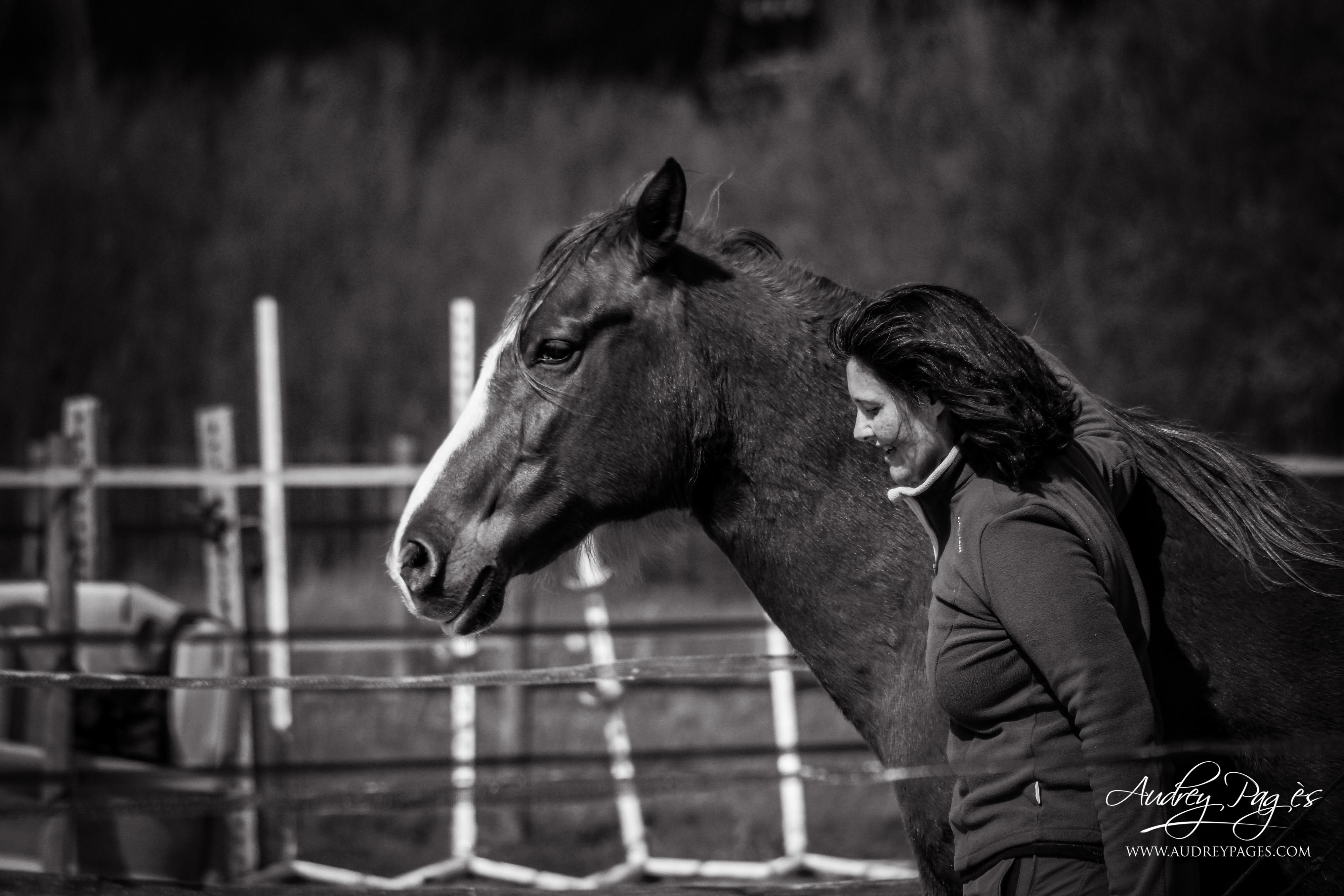 Aller la voie du cheval avec Eponaquest