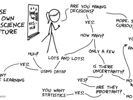 What Do Data Scientists Actually Do?