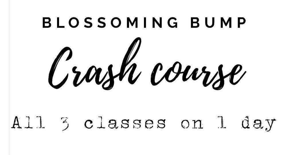 crash course image_edited_edited.jpg