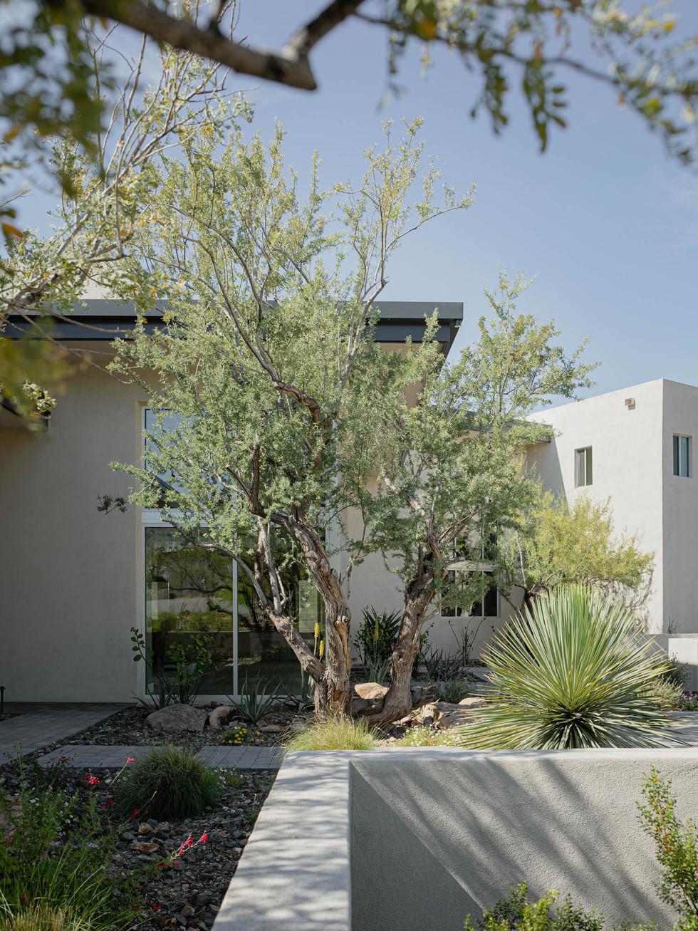 The Green Room Landscape Design-4474-web