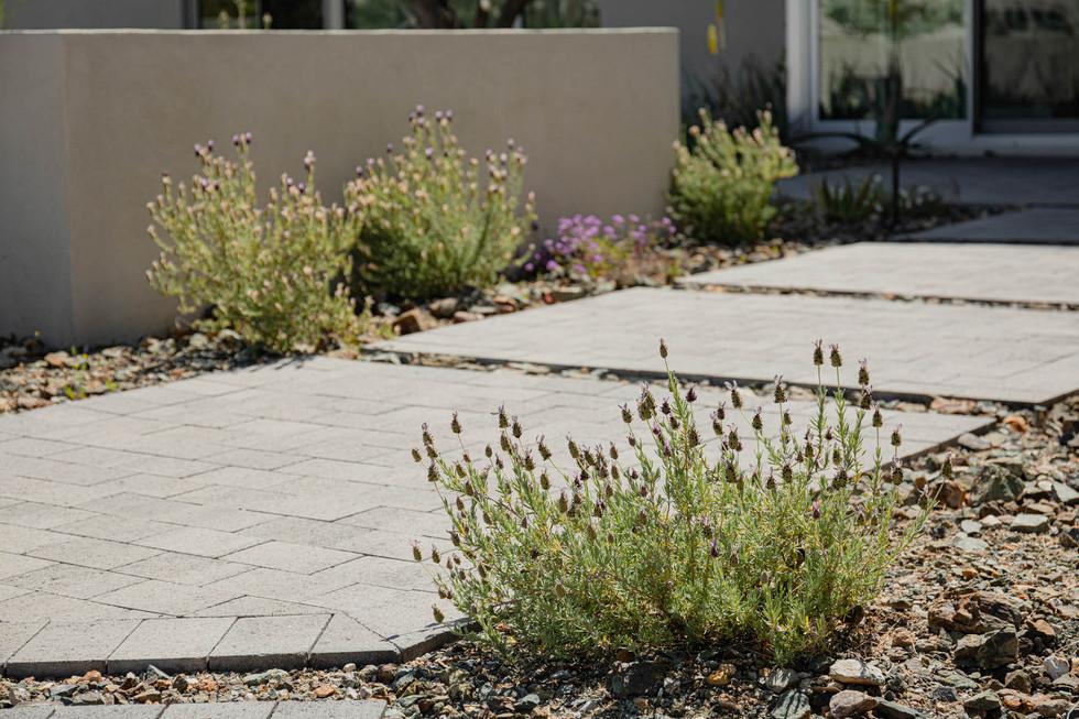 The Green Room Landscape Design-4504-web