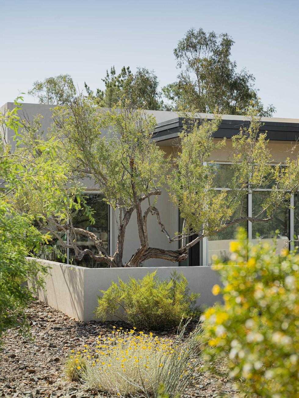 The Green Room Landscape Design-4460-web