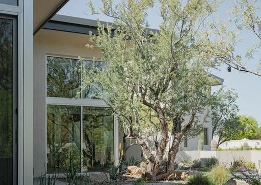 The Green Room Landscape Design-4472-web