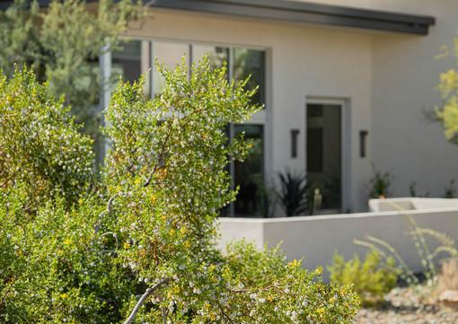 The Green Room Landscape Design-4450-web