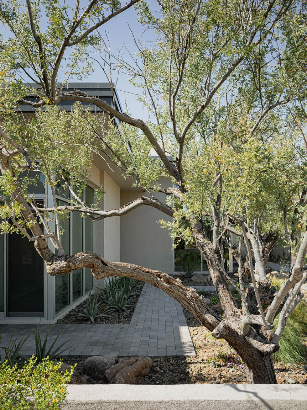 The Green Room Landscape Design-4467-web