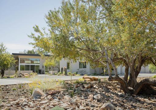 The Green Room Landscape Design-4551-web