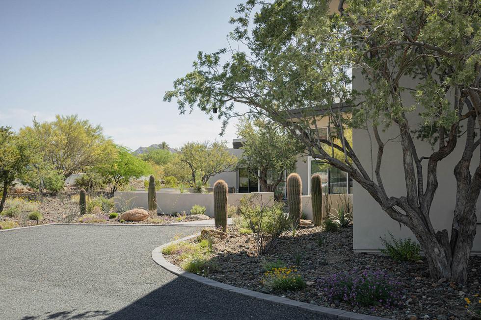 The Green Room Landscape Design-4496-web
