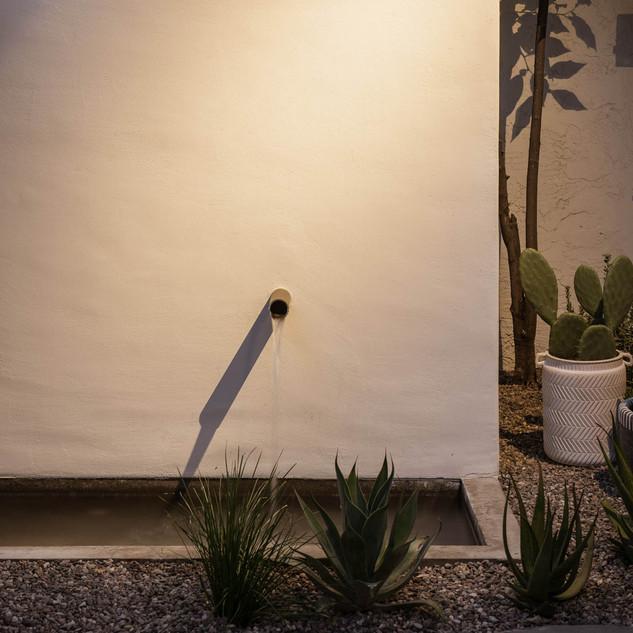 The Green Room Collaborative Landscape D