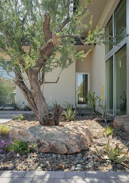 The Green Room Landscape Design-4540-web