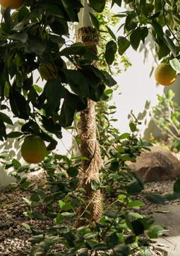 The Green Room Collaborative0882-web.jpg