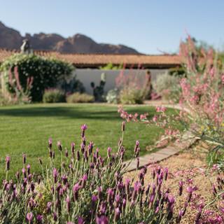 The Green Room Inc. Landscape Design Arr