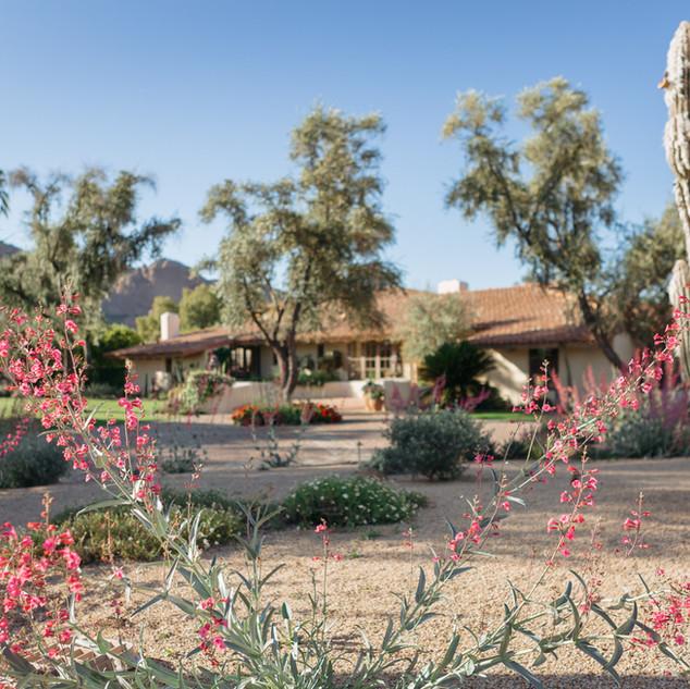 The Green Room Collaborative Landscape Design Arr