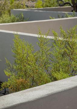 The Green Room Landscape Design-4488-web