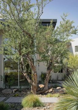 The Green Room Landscape Design-4478-web