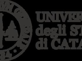 Università di Catania : ICP produrrà e commercializzerà DISSIPATORE