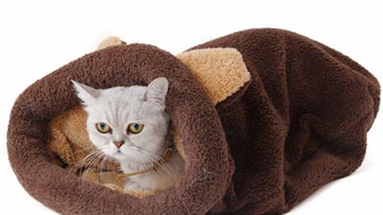Cat Winter Warm Coral Sleeping Bag