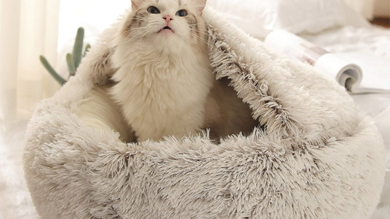 Luxurious Cave Pet Beds