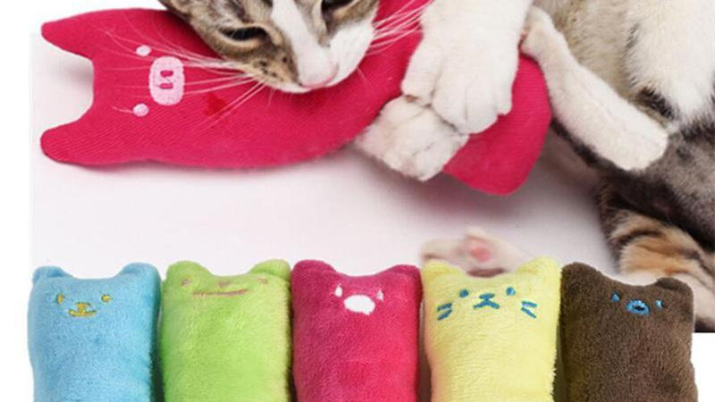Colourful Cat Toys