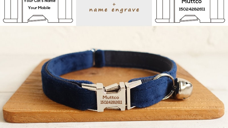 Sapphire Cat Collar