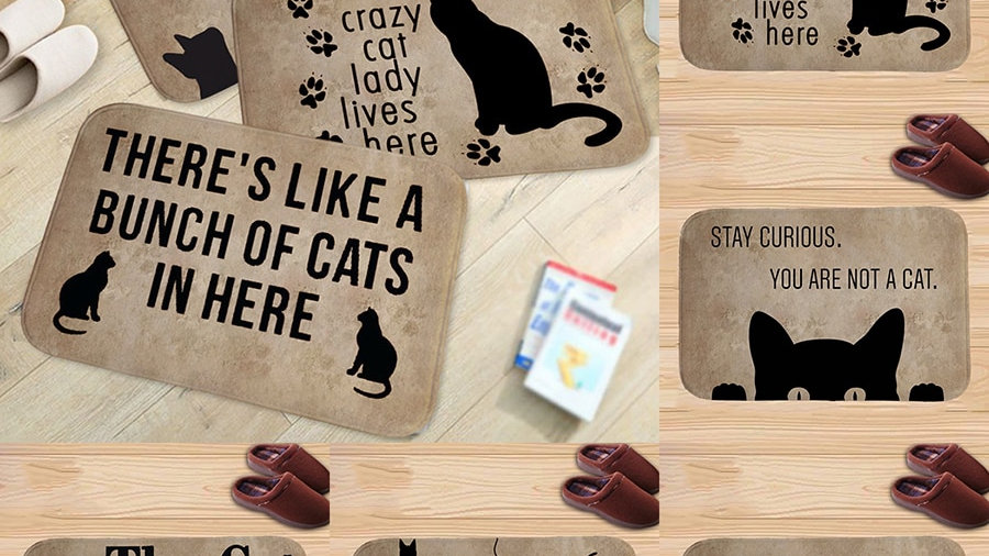 Water-Absorbing Kitty Floor Mat
