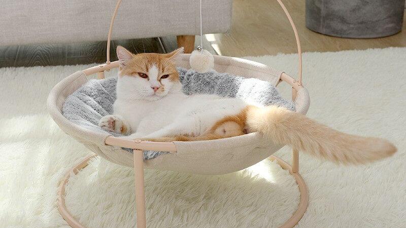 Stylish Kitty Bed