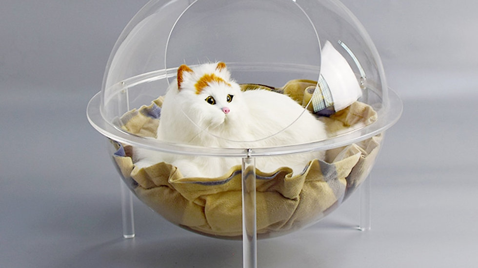 Transparent Cool Cat Nest