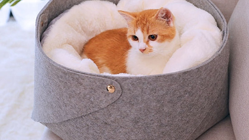Cosy Cat Basket