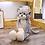 Thumbnail: Cute Fluffy Long Leg Cats