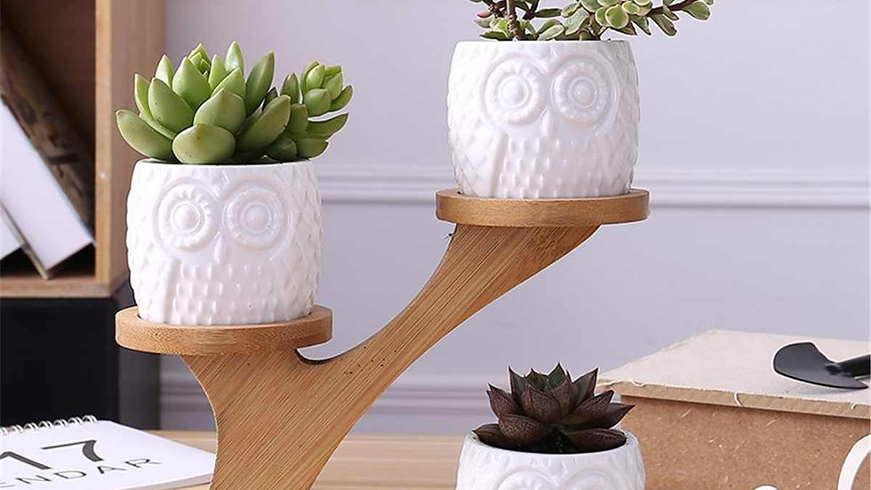 White Ceramic Owl Pot Set with Bamboo Stand