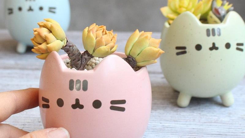 Cute Kitty Face Flower Pot