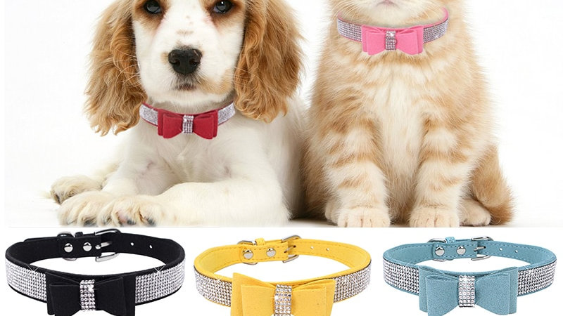 Pet Collar with Bow