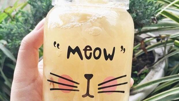 Kitten Print Glass Bottle