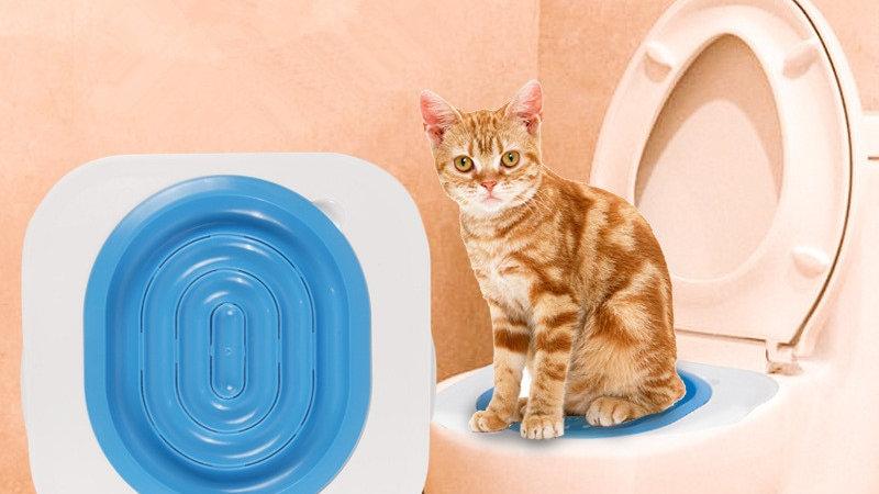 Kitty Toilet Trainer
