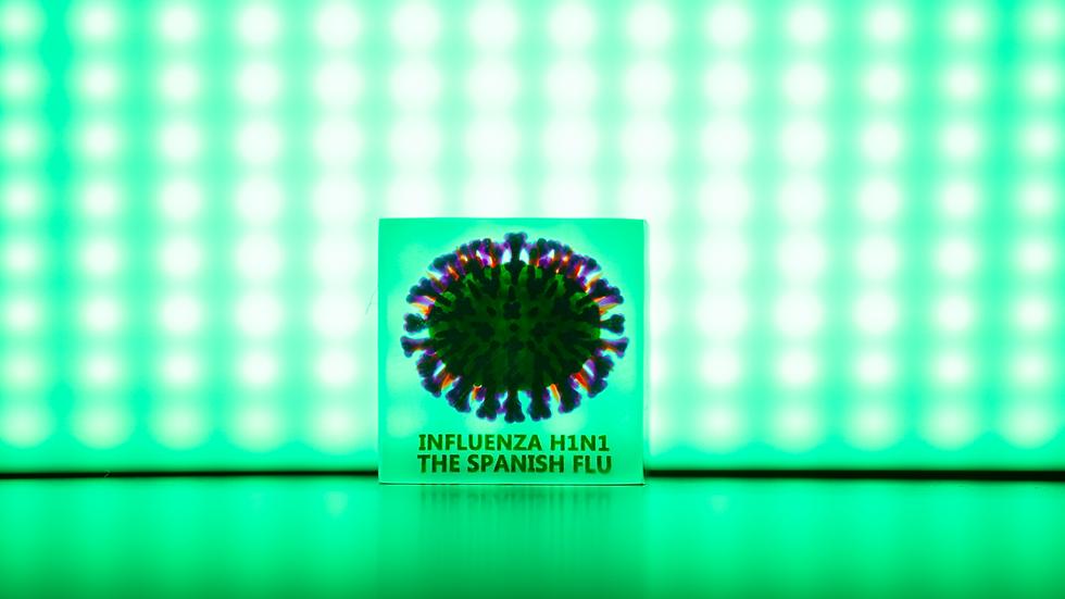 Single 3D Cube Influenza H1N1 (The Spanish Flu)