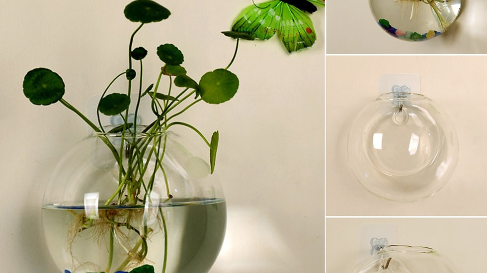 Transparent Glass Vase Wall Hanging