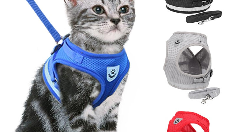 Adjustable Pet Harnesses with Leash