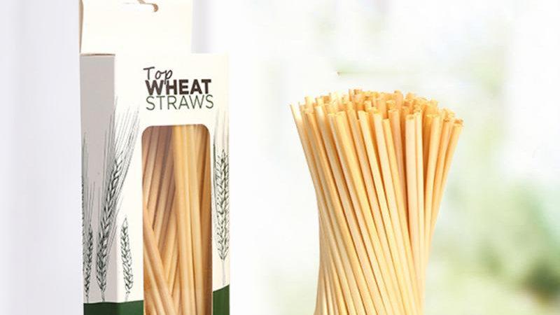 100 Biodegradable Drinking Straws