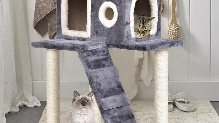 Cat Climbing Tree Condo