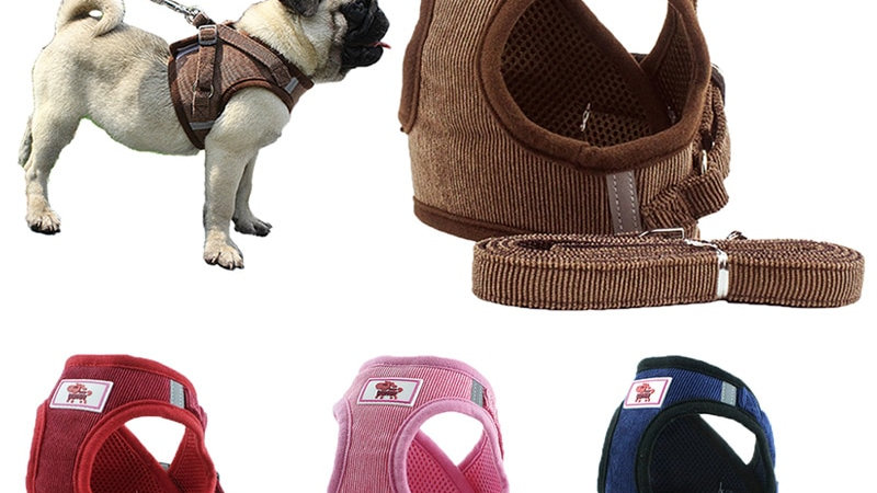 Adjustable and Breathable Dog Harness