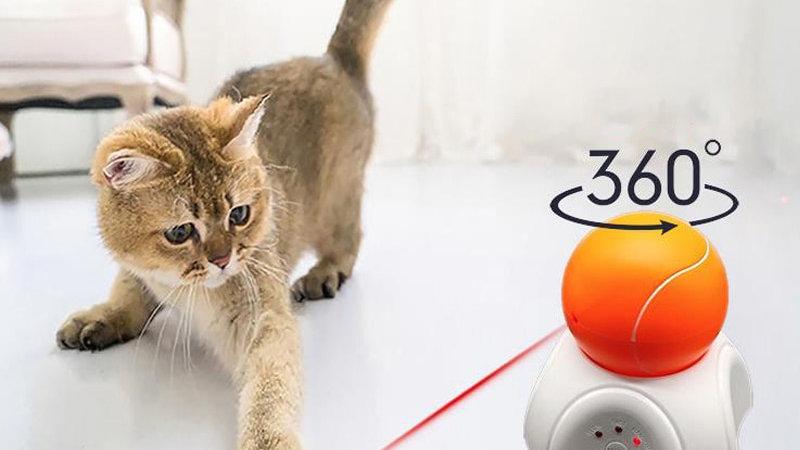 Interactive Laser Kitten Ball