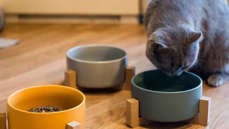Non Slip Ceramic Cat Bowl