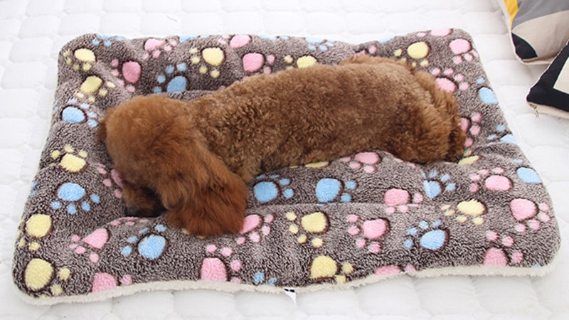 Super Soft Pet Beds
