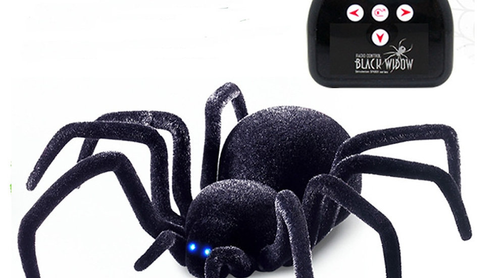 Remote Controlled Spider Toy for Cats
