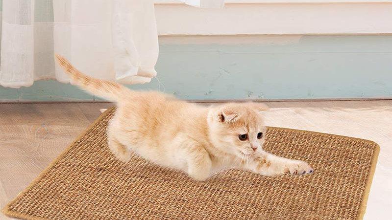 Cat Scratching Mat
