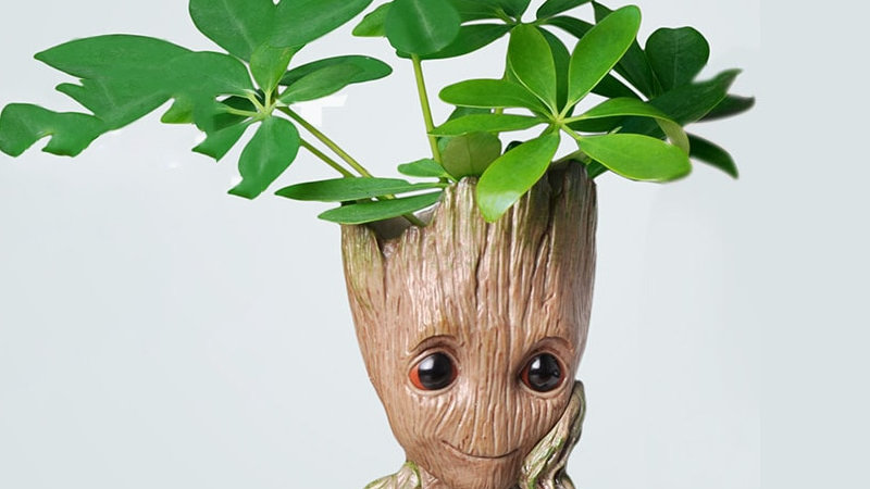 Groot Plant Pots