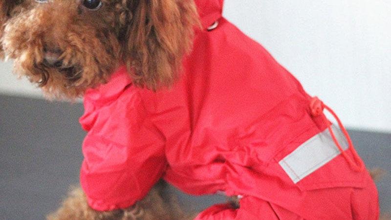 Reflective Waterproof Jacket for Pets
