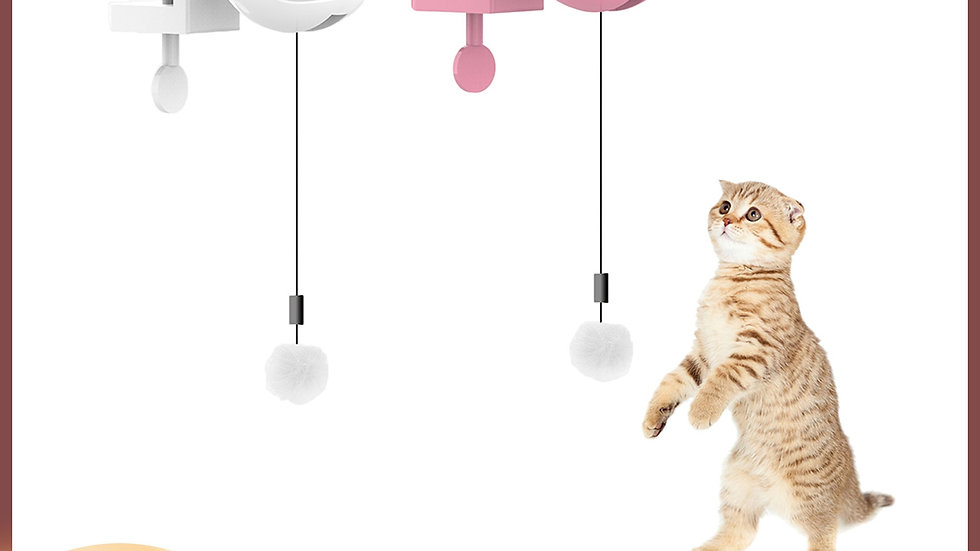 Electric Ball Cat Toy