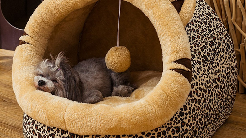 Pet Bed House With Ball